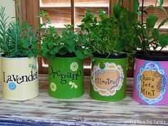 Turn tin cans into cache pots for herbs. DIY Tutorial with step-by-step instructions. Quick to make and low cost homemade gift idea. No dirt or mess - herbs stay in mini pots and sit inside the decorative tin pots. Easily removed for watering or transplanting. | The Micro Gardener