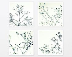 Black and White Photography Set 8x8 Zen Trees by DUEALBERI on Etsy, $69.00