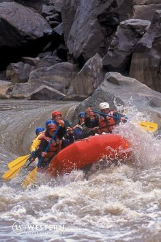 """Want an exhilarating 1 day rafting trip? Western River's day trip will take you down the Colorado River through Westwater Canyon- named by National Geographic as """"The West's Best Short Whitewater Trip"""". You'll hit exciting waves surrounded by gold and red canyon walls, and hike to caves, Indian petroglyphs, and historic cabins along the way!"""