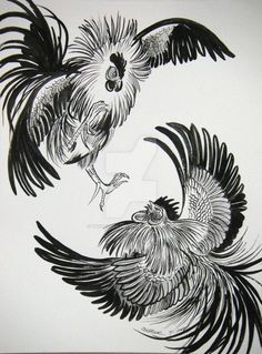 x Pen and Ink on Smooth Bristol Still trying to get the concept art, and working on the flow of feathers. Rooster Painting, Rooster Art, Rooster Logo, Chicken Painting, Chicken Art, Hahn Tattoo, Arte Do Galo, Fighting Tattoo, Cartoon Rooster