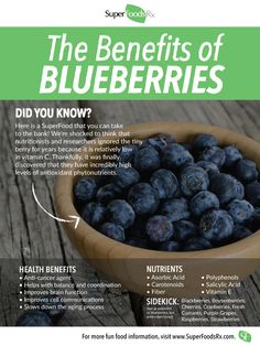 Eat Your Vegetables (and Other Advice for a Healthy and Nutritious Summer) Blueberries Health Benefits, Blueberry Benefits, Benefits Of Berries, Blueberry Nutrition Facts, Blueberries Nutrition, Growing Blueberries, Frozen Blueberries, Healthy Life, Healthy Living