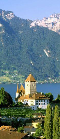 Spiez Castle, Bern, Switzerland                                                                                                                                                      More
