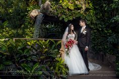 A beautiful summer wedding at the Cambridge Butterfly Conservatory and the Whistle Bear Country Club Bear Wedding, Wedding Pictures, Wedding Ideas, Butterfly Wedding, Conservatory, Picture Ideas, Cambridge, Enchanted, Summer Wedding