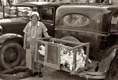 May 1939 Selling chickens at farmers' market in Weatherford, Tx.