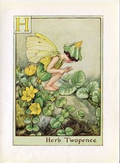 Herb Twopence Alphabet Letter H Flower Fairy Vintage Print, c.1940 Cicely Mary Barker Book Plate Illustration by TheOldMapShop on Etsy