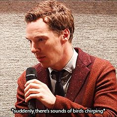 Confused but Cute Batch