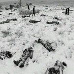 """Bury my heart...."" at Wounded Knee. A very, very dark chapter in the history of the USA."