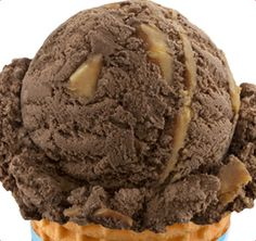 Baskin Robbins Peanut Butter and Chocolate-My favorite ice cream in the whole world!