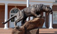 High Point University, Home of the Panthers