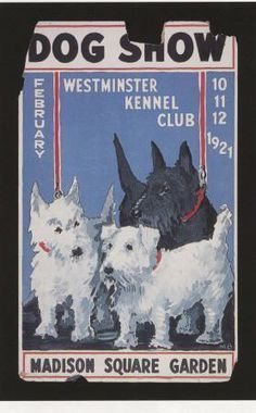 A Westminster Kennel Club Show poster from 1921, the only poster to survive in the WKC archives