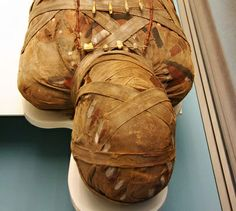 To learn how the dead where mummified , it is a great interest as I have a degree in forensic anthropology