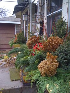 Winter Windowboxes, Dryed Hydrangea, Spruce tips, Rose Hips, Incense Cedar, Garden Design, www.sarahscottagecreation.com Us Images, Container Gardening, House Tours, Winter, Lush, Landscaping, Decorating Ideas, Christmas Decorations, Cottage