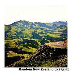 Te Mata Peak, near Hastings/Napier, New Zealand. Actually Havelock North. Honeymoon In New Zealand, Kia Ora, New Zealand Cruises, North Island New Zealand, New Zealand Adventure, Visit New Zealand, Nova, Australia Travel, Places To See