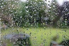 Il pleut en Bretagne ? #EasyNip