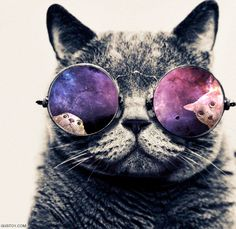 Galaxy hipster cat from tumblr