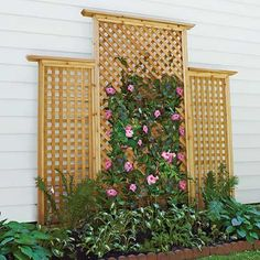 lattice trellis backyard project, how to - this would look awesome on the side of our garage.