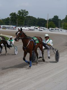 The 2-year-old trotter Dream Crazed and driver Joe Kramp.