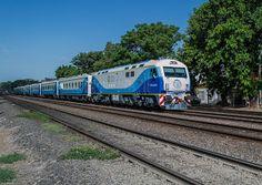 ferrocarriles del sud: El mito del tren vacío: Rufino también pide más fr...