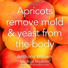 Apricots remove mold & yeast from the body Learn more about the healing powers of apricots in Life-Changing Foods, link in profile