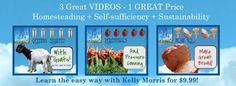 Enter to win this bundle of three homesteading videos!