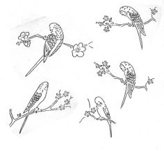 budgies embroidery pattern transfer
