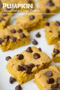 Melted chocolate and pumpkin makes a heavenly match!  These Pumpkin Chocolate Chip Bars come together so quickly and taste delicious!