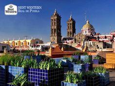 EL MEJOR HOTEL EN PUEBLA. Cuando hablamos de la capital del estado, podemos resumirlo en dos palabras: belleza incomparable. El encanto de nuestra ciudad es único y en Best Western Real de Puebla, le invitamos a reservar con nosotros a 3, 6 o 9 meses sin intereses, para vivir la mejor experiencia de viaje. Le recordamos que puede llamar al (222)2300122, para solicitar la información completa. #bestwesternenpuebla