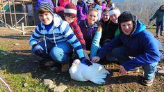 Indraloka Animal Sanctuary teaches NEPA kids compassion