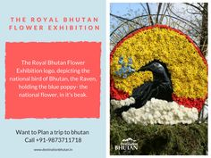 The Royal Culture of Bhutan  #MustVisit #Bhutan #BhutanTourism #DestinationBhutan #Destinations #RoyalCulture #Heritage #People #Love #Travelers #TravelLove  To know more about these types of information, please visit our official website at: http://www.destinationbhutan.in/about-bhutan