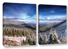 Winter Vision by Dragos Dumitrascu 2 Piece Photographic Print on Wrapped Canvas