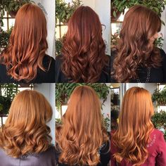 Burgundy Brown - 40 Red Hair Color Ideas – Bright and Light Red, Amber Waves, Ginger Hair Color - The Trending Hairstyle Ginger Hair Color, Hair Color And Cut, Ginger Hair Dyed, Ombre Hair, Red Ombre, Hair Inspo, Hair Inspiration, Shades Of Red Hair, Hair Color Auburn