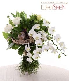 02396 — Lorashen