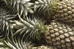 How to Make a Table Top Pineapple Palm Tree Centerpiece
