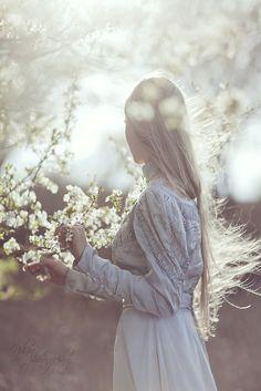 blossom by blossom the spring begins