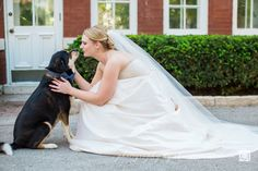 #StLouisWeddingPhotographer #TowerGrovePark #PiperPalmHouse | ©Christina Ahlheim | Charisma Photography | Tower Grove Park and Piper Palm House Wedding Photography | Bride and Dog