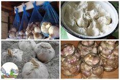 8 Metode pentru păstrarea usturoiului proaspăt pentru mult timp Icing, Stuffed Mushrooms, Vegetables, Desserts, Food, Stuff Mushrooms, Tailgate Desserts, Deserts, Essen