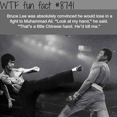 Better Pictures - Bruce Lee vs Muhammad Ali - WTF fun facts To anybody wanting to take better photographs today Wow Facts, Wtf Fun Facts, True Facts, Random Facts, Crazy Facts, Funny Memes, Hilarious, Jokes, Weird History Facts