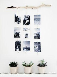 decoration-photos-suspedus-en-noir-et-blanc-bois-flotté-plantes-pots-de-fleurs-idée-diy-facile-decoration-à-faire-soi-meme-style-scandinave