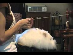 Angora Rabbit Spinning 2 Margaret - you need to watch this one....