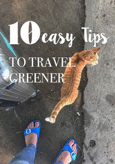 10 Easy tips to Green Travel for the lazy Traveler. Are you looking for some easy to implement tips to green travel? Even if you are a lazy traveler, I'v got you covered – eco friendly travel made a easy. Travel Advice, Travel Tips, Travel Hacks, Travel Guides, Slow Travel, Travel Packing, Green Tips, Budget Planer, Responsible Travel