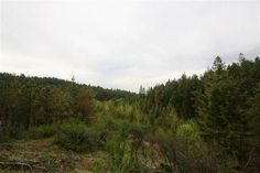 Spokane Area Land: 10 acres with beautiful views in a terrific, South Spokane Valley, location. This building parcel has a private feel, yet is located just 5 minutes from a grocery store. Surrounded by high end homes, this is a terrific value. Set back off of Highway 27 with an easement across county property. Located in the sought after Central Valley School District. Seller financing available!
