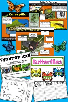 Butterflies: Informational Unit for Primary Grades– Informative Slideshow, Anchor Charts, Writing Materials, and Printables! kindergarten, first grade, life cycles $