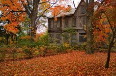Abandoned House in Autumn.