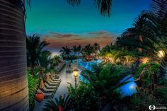- Nightscape on Roca Nivaria Hotel - Tenerife Tenerife, Pools, Aquarium, Goldfish Bowl, Teneriffe, Aquarium Fish Tank, Aquarius, Swimming Pools, Ponds