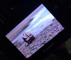 Wild 👍 www.kjoreproject.com #kjøre #kjoreproject #photo #canon #handmade #wallets #accessories #vibram #shoes #backpacks #denim 