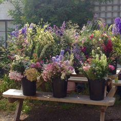 Buckets of our pick-your-own flowers, July
