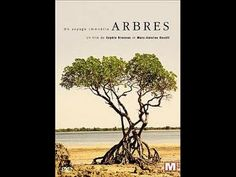 Arbres - Un voyage immobile - Documentaire Francis Hallé