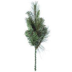 Mixed Colorado Pine Needle Pick | Shop Hobby Lobby 1