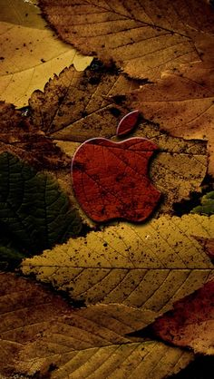 .. Fall in Love with Apple