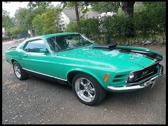 F166 1970 Ford Mustang Mach 1  351 CI, Automatic Photo 1